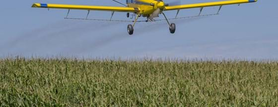 Plane above corn field