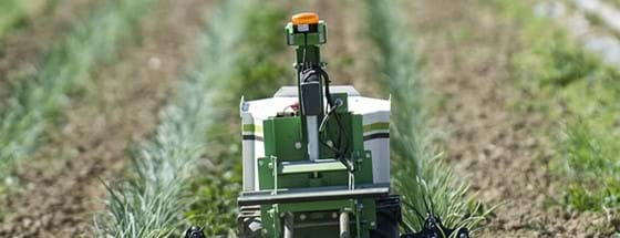 Oz weeding robot